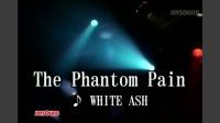 The Phantom Pain