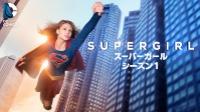 SUPERGIRL/スーパーガール シーズン1 動画