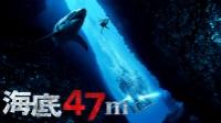 海底47m 動画