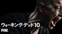 ウォーキング・デッド シーズン10 1話~16話 動画